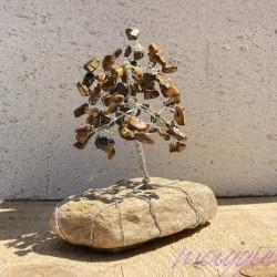 Drevo_življenja _Tigrovo_oko